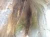 grota-fundului-pesterii-2-tabara-tara-luanei-interad-15-18-august-2013