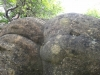 trovanti-babele-din-buzau-21-tabara-tara-luanei-interad-15-18-august-2013