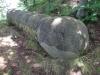 trovanti-babele-din-buzau-24-tabara-tara-luanei-interad-15-18-august-2013