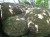 trovanti-babele-din-buzau-26-tabara-tara-luanei-interad-15-18-august-2013