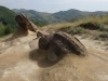 trovanti-babele-din-buzau-3-tabara-tara-luanei-interad-15-18-august-2013