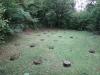 cetatuie-rima-capitala-12-echinoctiu-de-toamna-2013-interad-travel-infinit