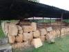 cetatuie-rima-capitala-8-echinoctiu-de-toamna-2013-interad-travel-infinit