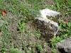 sarmizegetusa-regia-19-echinoctiu-de-toamna-2013-interad-travel-infinit
