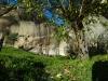 corbii-de-piatra-102-19-octombrie-2013-interad-travel-infinit