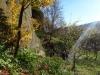 corbii-de-piatra-27-19-octombrie-2013-interad-travel-infinit