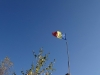 corbii-de-piatra-35-19-octombrie-2013-interad-travel-infinit