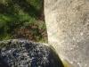 corbii-de-piatra-59-19-octombrie-2013-interad-travel-infinit