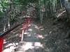 cetatea-poenari-43-tabara-initiatica-la-grota-parintelui-arsenie-boca-in-perioada-02-04-august-2013-organizator-interad