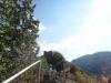 cetatea-poenari-7-tabara-initiatica-la-grota-parintelui-arsenie-boca-in-perioada-02-04-august-2013-organizator-interad