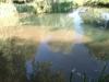 iazul-parintelui-arsenie-boca-5-tabara-initiatica-la-grota-parintelui-arsenie-boca-in-perioada-02-04-august-2013-organizator-interad