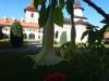 manastirea-sambata-3-tabara-initiatica-la-grota-parintelui-arsenie-boca-in-perioada-02-04-august-2013-organizator-interad