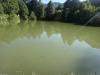 sambata-de-sus-4-tabara-initiatica-la-grota-parintelui-arsenie-boca-in-perioada-02-04-august-2013-organizator-interad
