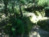sinca-veche-13-tabara-initiatica-la-grota-parintelui-arsenie-boca-in-perioada-02-04-august-2013-organizator-interad