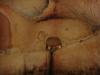 sinca-veche-33-tabara-initiatica-la-grota-parintelui-arsenie-boca-in-perioada-02-04-august-2013-organizator-interad