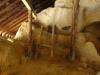 sinca-veche-42-tabara-initiatica-la-grota-parintelui-arsenie-boca-in-perioada-02-04-august-2013-organizator-interad