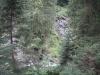 traseu-spre-grota-parintelui-arsenie-boca-1-tabara-initiatica-la-grota-parintelui-arsenie-boca-in-perioada-02-04-august-2013-organizator-interad
