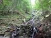 traseu-spre-grota-parintelui-arsenie-boca-15-tabara-initiatica-la-grota-parintelui-arsenie-boca-in-perioada-02-04-august-2013-organizator-interad