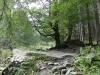 traseu-spre-grota-parintelui-arsenie-boca-22-tabara-initiatica-la-grota-parintelui-arsenie-boca-in-perioada-02-04-august-2013-organizator-interad