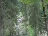 traseu-spre-grota-parintelui-arsenie-boca-3-tabara-initiatica-la-grota-parintelui-arsenie-boca-in-perioada-02-04-august-2013-organizator-interad