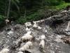turma-de-oi-8-tabara-initiatica-la-grota-parintelui-arsenie-boca-in-perioada-02-04-august-2013-organizator-interad