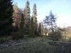 prislop-20-martie-2014-28