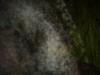 pestera-ialomitei-23-august-2013-interad-travel-infinit-5