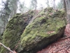capul-de-dinozaur-69-in-23-februarie-2014