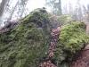 capul-de-dinozaur-71-in-23-februarie-2014