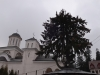 manastirea-caraiman-38-in-23-februarie-2014