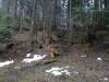pietrele-misterioase-din-busteni-103-in-23-februarie-2014