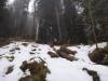 pietrele-misterioase-din-busteni-26-in-23-februarie-2014