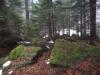 pietrele-misterioase-din-busteni-50-in-23-februarie-2014
