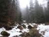 pietrele-misterioase-din-busteni-84-in-23-februarie-2014