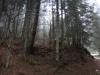 pietrele-misterioase-din-busteni-87-in-23-februarie-2014