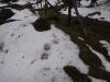 pietrele-misterioase-si-ursul-08-busteni-23-02-2014