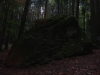 capul-de-dinozaur-5-tabara-initiatica-interad-29-septembrie-2013