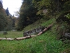 piatra-misterioasa-4-tabara-initiatica-interad-29-septembrie-2013
