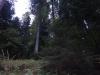 piatra-misterioasa-7-tabara-initiatica-interad-29-septembrie-2013