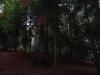 pietrele-piticilor-9-tabara-initiatica-interad-29-septembrie-2013