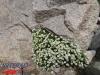 interad-excursie-sfinx-omul-pestera-23