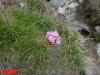 interad-excursie-sfinx-omul-pestera-48