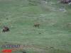 interad-excursie-sfinx-omul-pestera-89