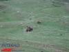 interad-excursie-sfinx-omul-pestera-90