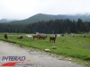interad-excursie-sfinx-omul-pestera-91
