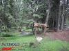 interad-excursie-sfinx-omul-pestera-92