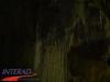 interad-excursie-sfinx-omul-pestera-98