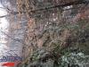 tabara-prislop-sarmizegetusa-costesti-ansamblul-brancusi-31-01-03-02-2013-interad-18