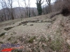tabara-prislop-sarmizegetusa-costesti-ansamblul-brancusi-31-01-03-02-2013-interad-66