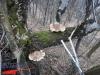 tabara-prislop-sarmizegetusa-costesti-ansamblul-brancusi-31-01-03-02-2013-interad-69